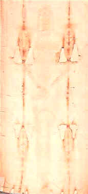 This image gives an almost natural aspect to that part of the Shroud which represents the front of the body. The human figure is hardly visible and what catches the eye are the scars of the misadventures suffered by the Shroud down the centuries : traces of scorching, of mending, stains, folds, )