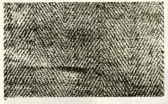"Black and white photography of the cloth of the Shroud ; the ""herringbone"" aspect of the cloth is clearly visible, as well as the position of the individual threads. On this photo, the fibres - which make up each thread - are too small to be visible."